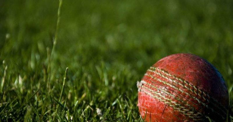 Press Release: Wolfestone Group Sponsor Pontardawe Cricket Club for the Coming Season
